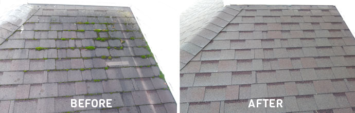 Roof Cleaning Without Pressure Washing Saber Soft Wash